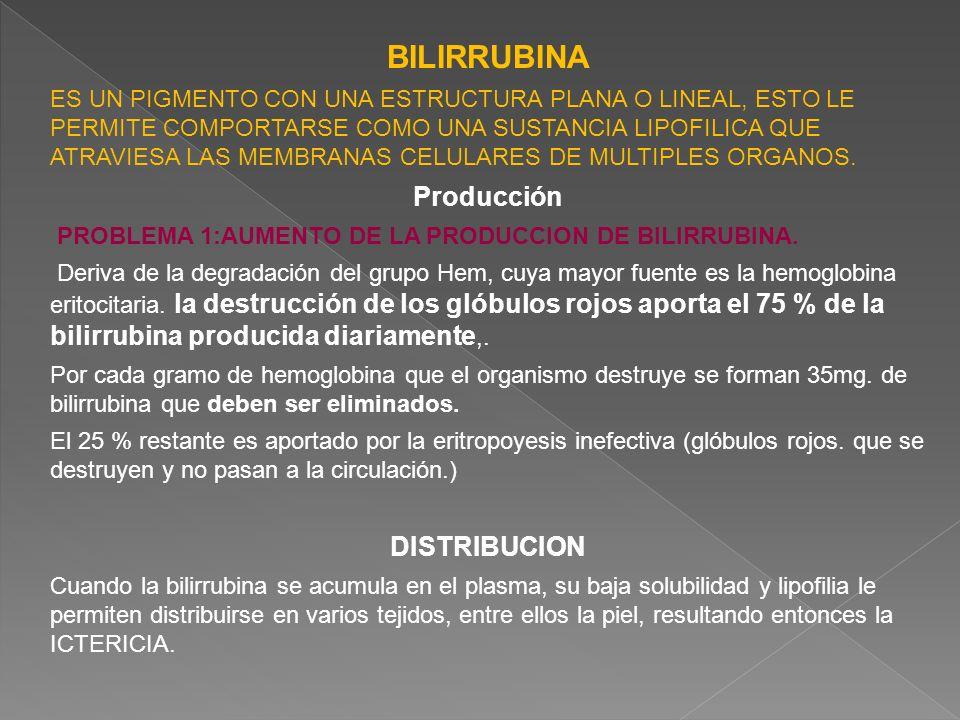 BILIRRUBINA Producción DISTRIBUCION