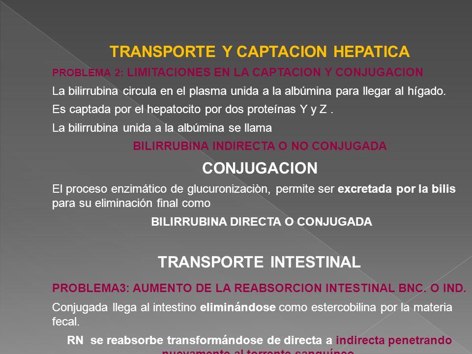 TRANSPORTE Y CAPTACION HEPATICA CONJUGACION TRANSPORTE INTESTINAL