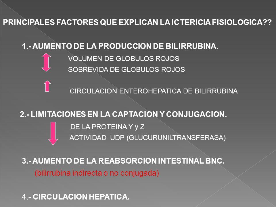 PRINCIPALES FACTORES QUE EXPLICAN LA ICTERICIA FISIOLOGICA