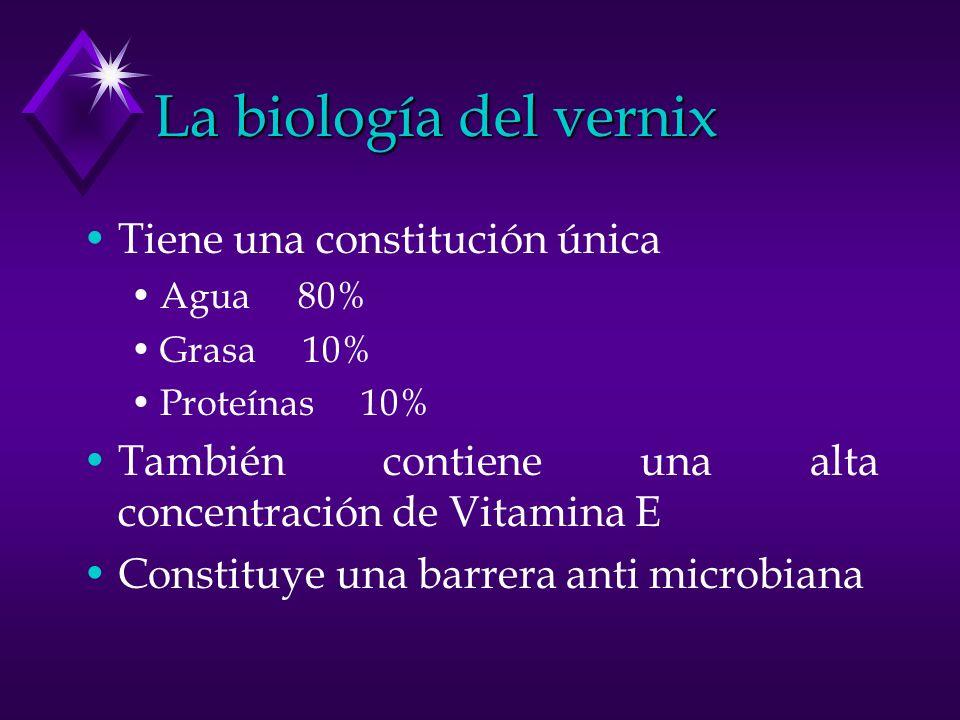 La biología del vernix Tiene una constitución única