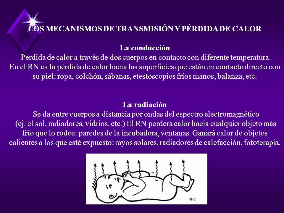 LOS MECANISMOS DE TRANSMISIÓN Y PÉRDIDA DE CALOR