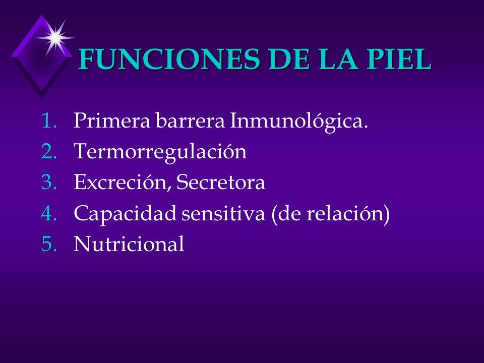 FUNCIONES DE LA PIEL Primera barrera Inmunológica. Termorregulación