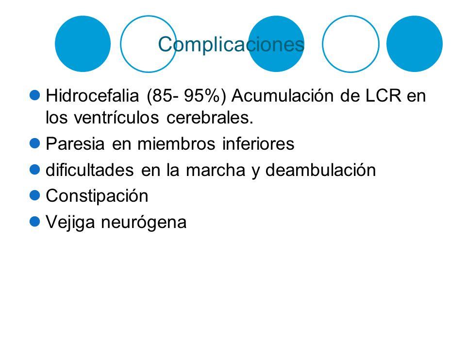 Complicaciones Hidrocefalia (85- 95%) Acumulación de LCR en los ventrículos cerebrales. Paresia en miembros inferiores.