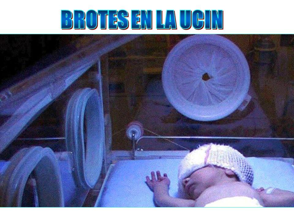 BROTES EN LA UCIN