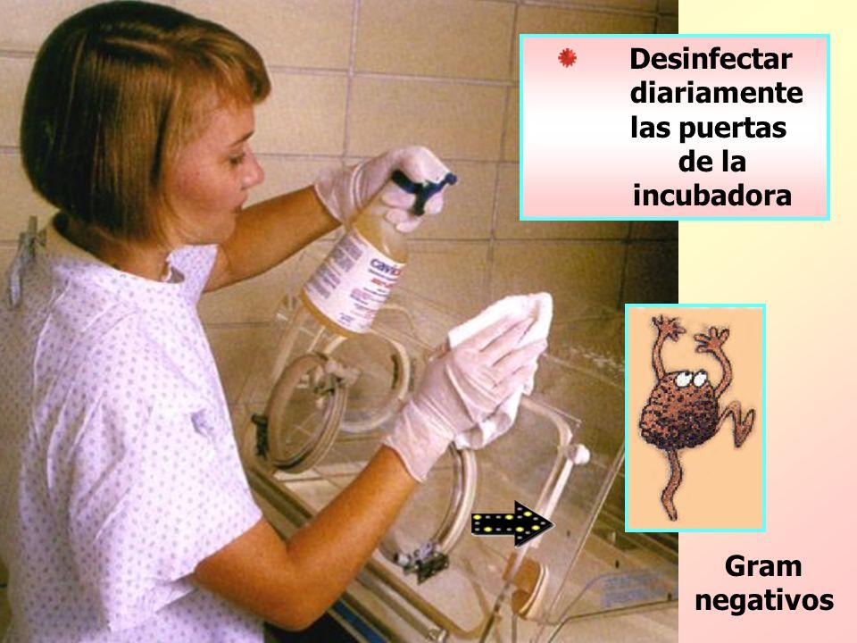 Desinfectar diariamente las puertas de la incubadora Gram negativos