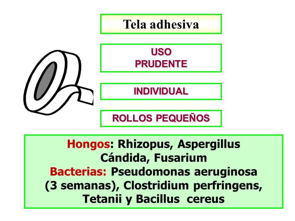 Tela adhesiva Hongos: Rhizopus, Aspergillus Cándida, Fusarium