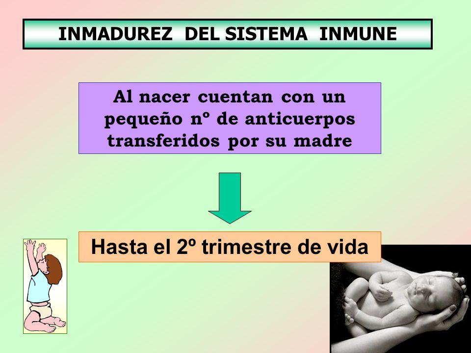INMADUREZ DEL SISTEMA INMUNE Hasta el 2º trimestre de vida