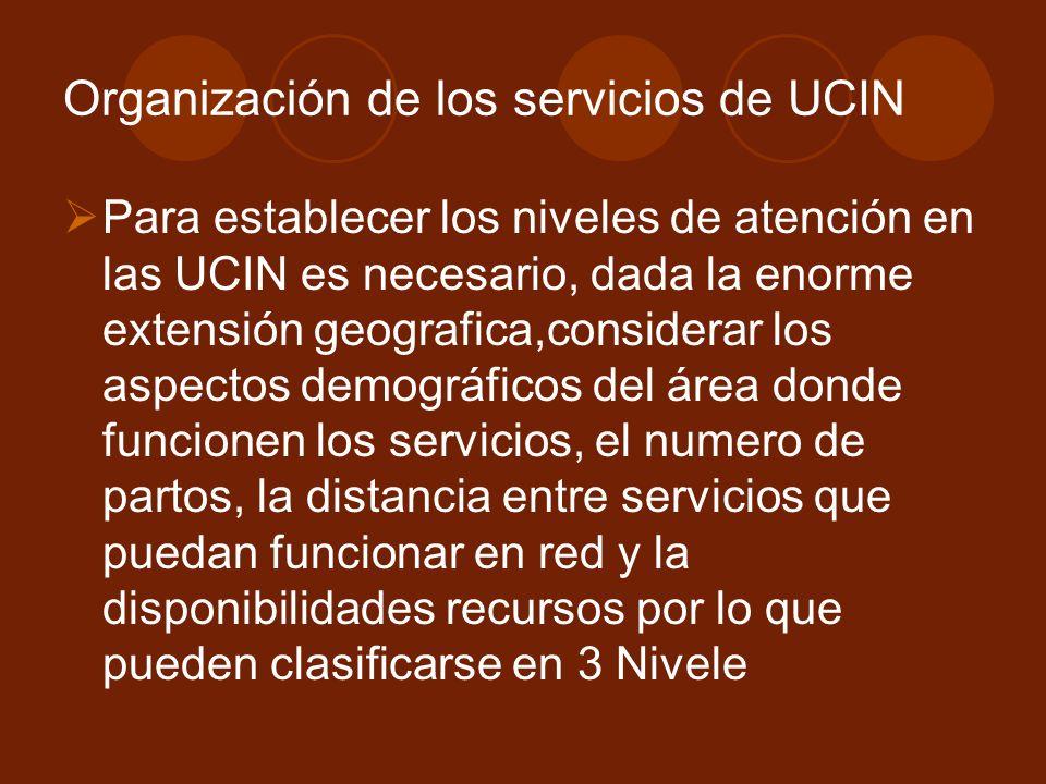 Organización de los servicios de UCIN