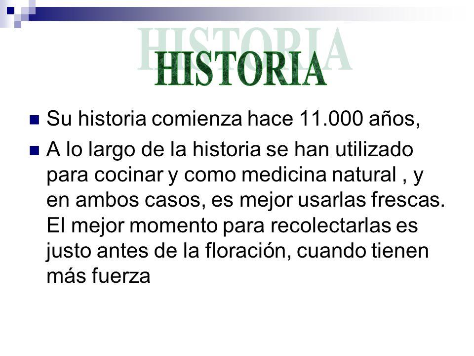 HISTORIA Su historia comienza hace 11.000 años,