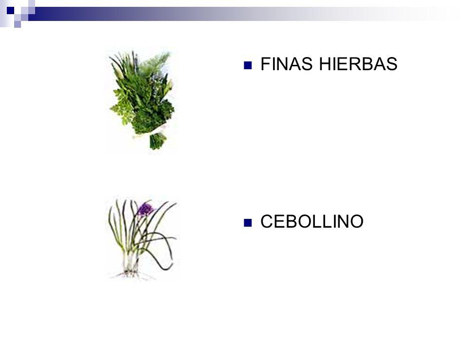 FINAS HIERBAS CEBOLLINO