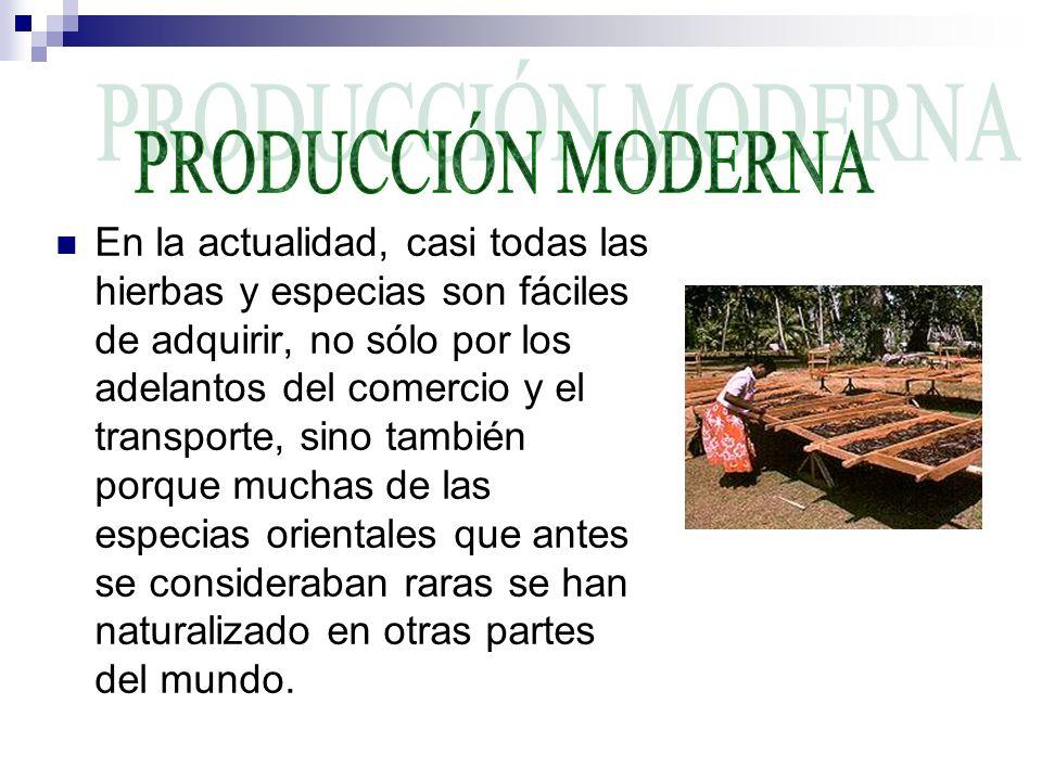 PRODUCCIÓN MODERNA