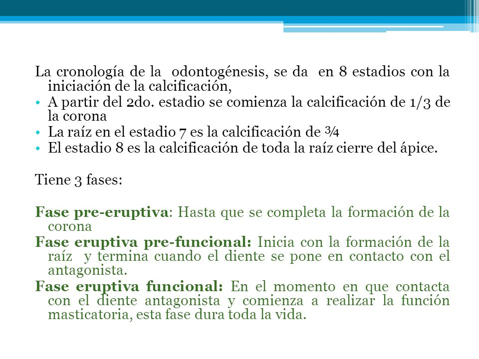 La cronología de la odontogénesis, se da en 8 estadios con la iniciación de la calcificación,