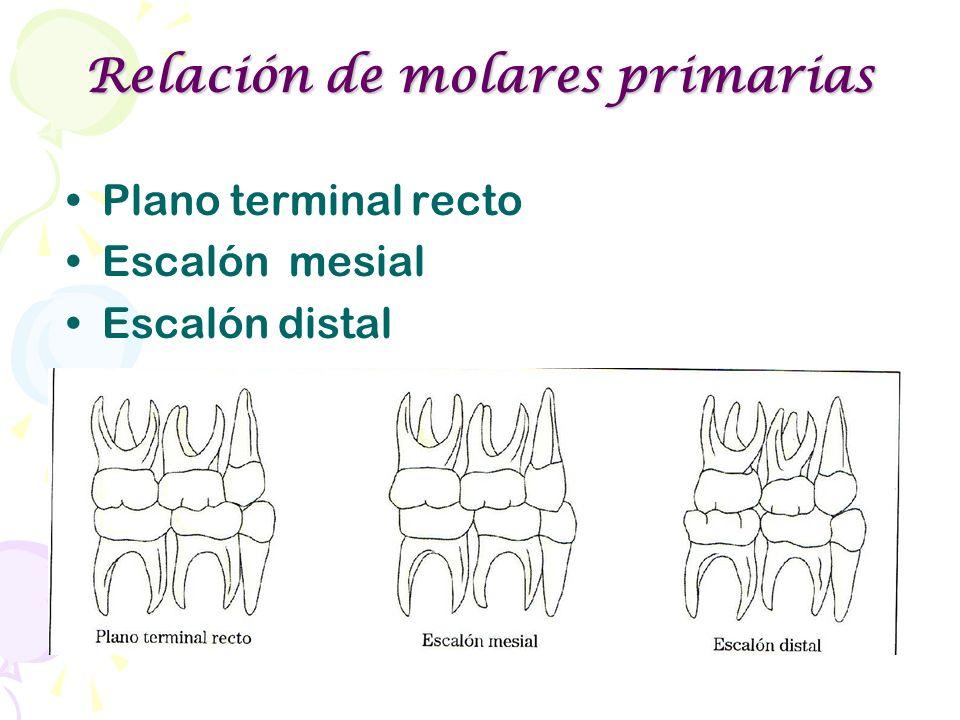 Relación de molares primarias