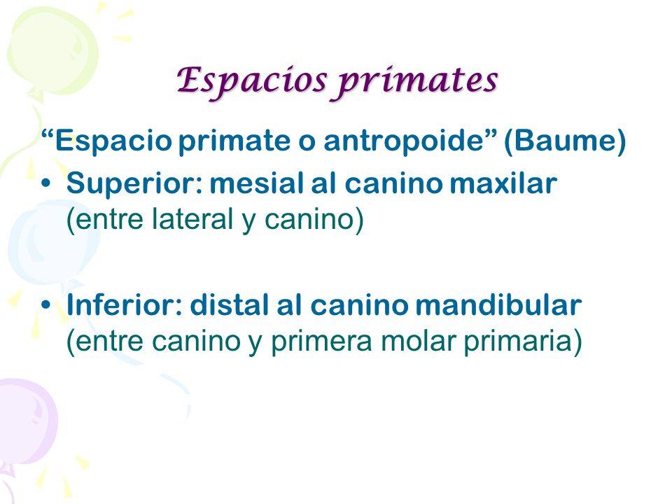 Espacios primates Espacio primate o antropoide (Baume)