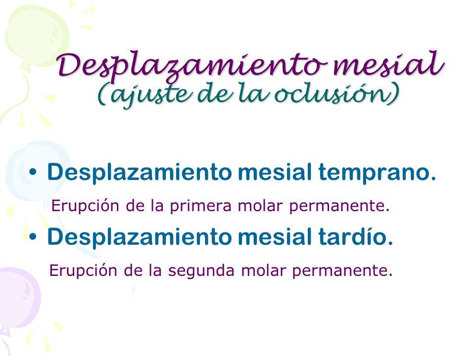 Desplazamiento mesial (ajuste de la oclusión)