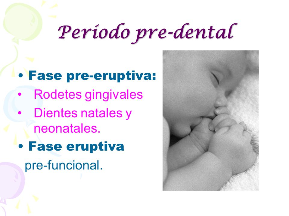 Período pre-dental Fase pre-eruptiva: Rodetes gingivales