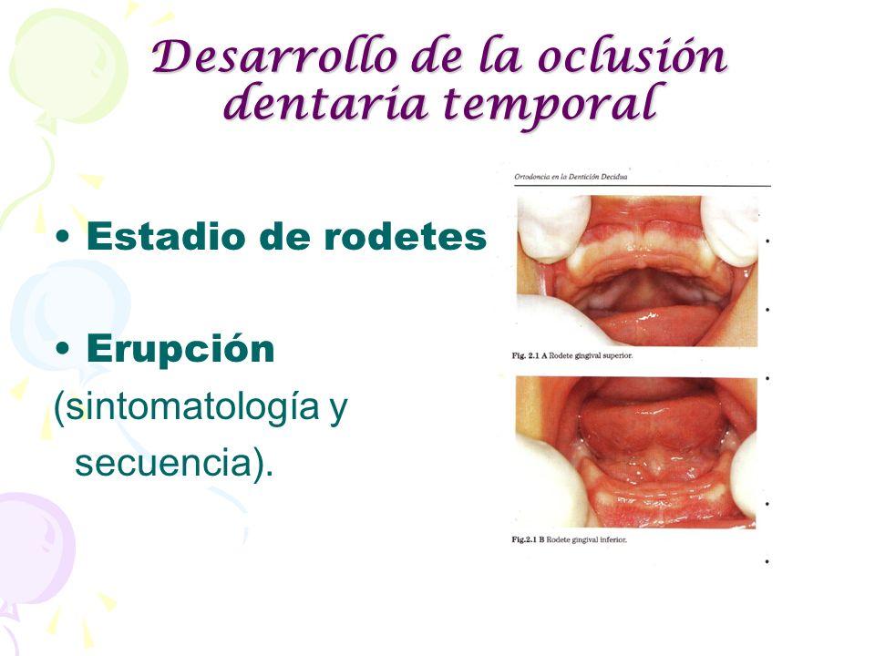 Desarrollo de la oclusión dentaria temporal