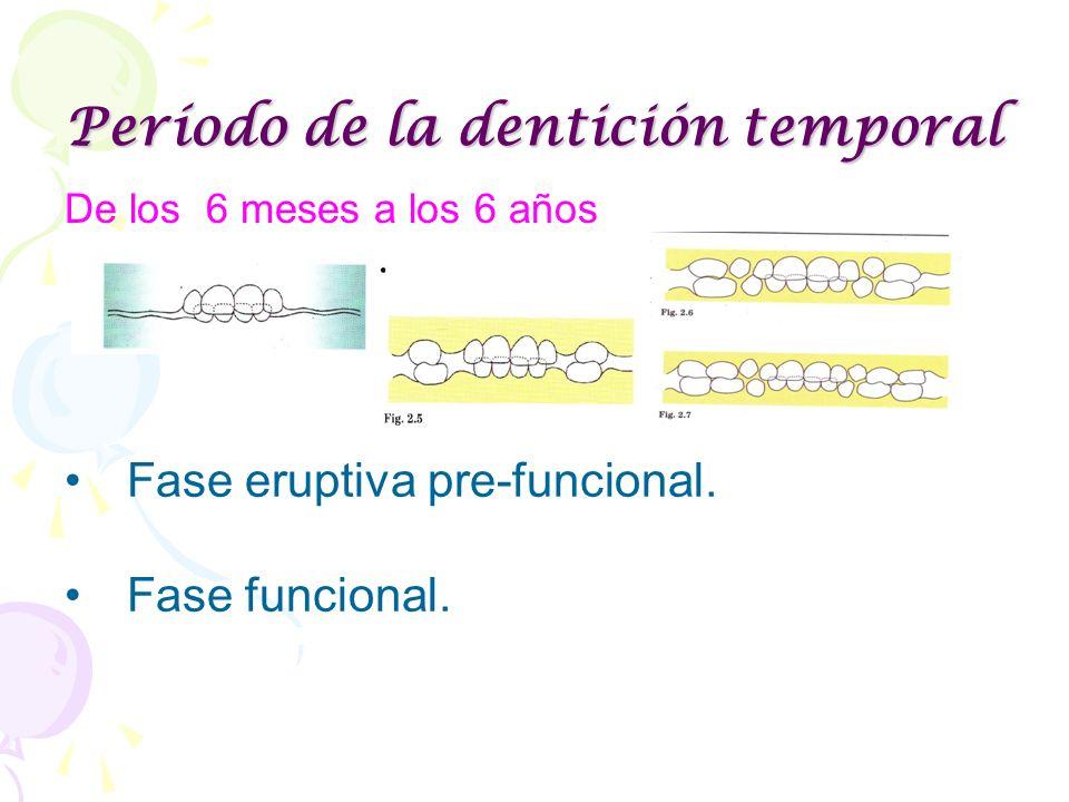 Período de la dentición temporal