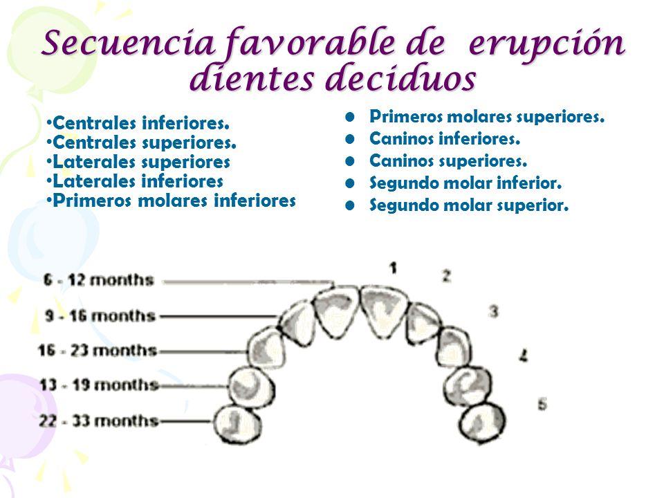 Secuencia favorable de erupción dientes deciduos