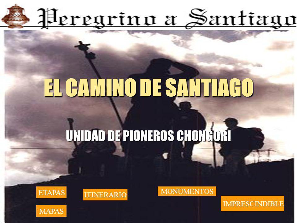 UNIDAD DE PIONEROS CHONGORI