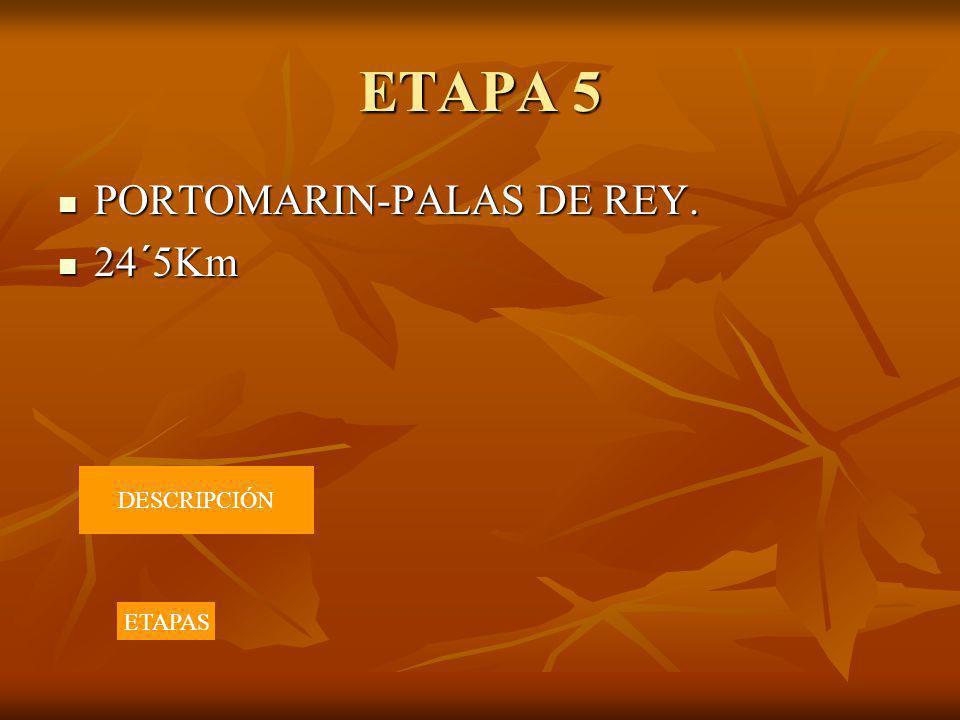 ETAPA 5 PORTOMARIN-PALAS DE REY. 24´5Km DESCRIPCIÓN ETAPAS