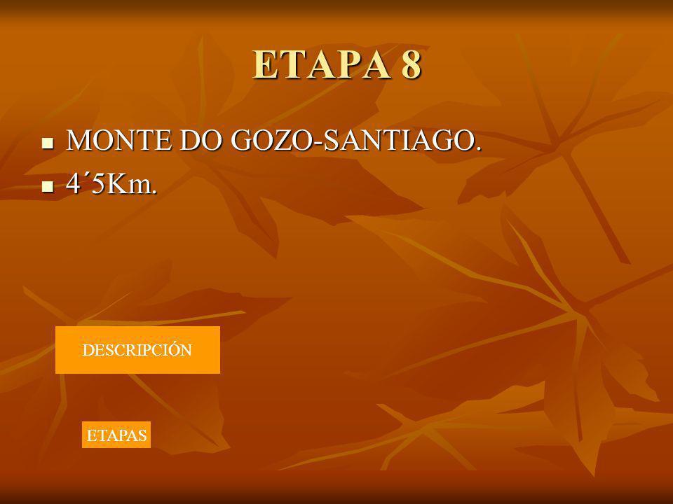 ETAPA 8 MONTE DO GOZO-SANTIAGO. 4´5Km. DESCRIPCIÓN ETAPAS