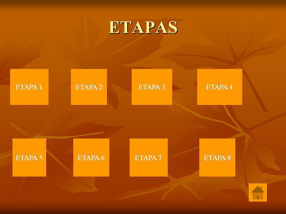 ETAPAS ETAPA 1 ETAPA 2 ETAPA 3 ETAPA 4 ETAPA 5 ETAPA 6 ETAPA 7 ETAPA 8