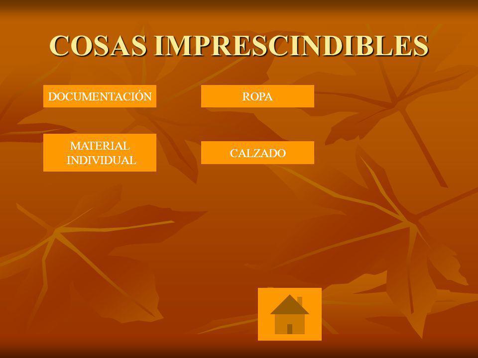 COSAS IMPRESCINDIBLES