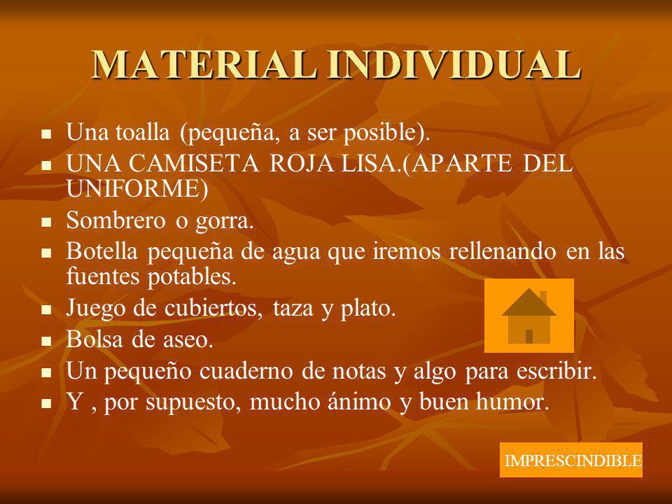 MATERIAL INDIVIDUAL Una toalla (pequeña, a ser posible).