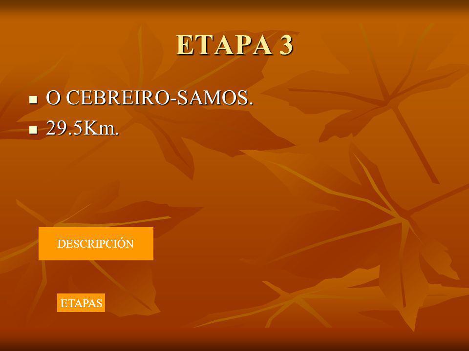 ETAPA 3 O CEBREIRO-SAMOS. 29.5Km. DESCRIPCIÓN ETAPAS