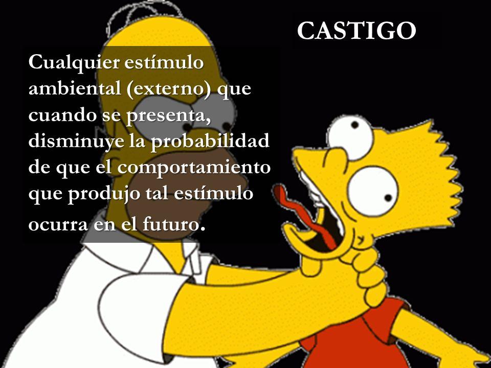 CASTIGO www.themegallery.com.