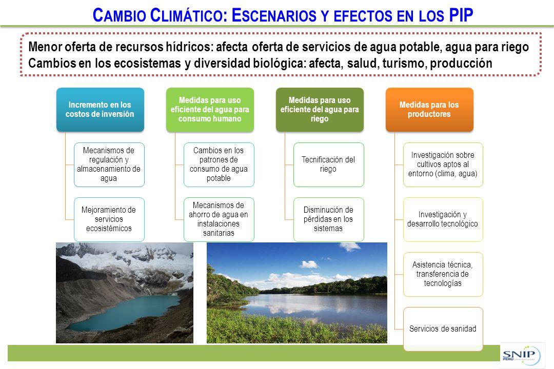 Cambio Climático: Escenarios y efectos en los PIP