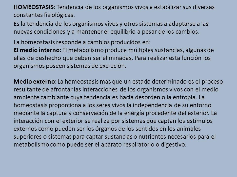 HOMEOSTASIS: Tendencia de los organismos vivos a estabilizar sus diversas constantes fisiológicas.