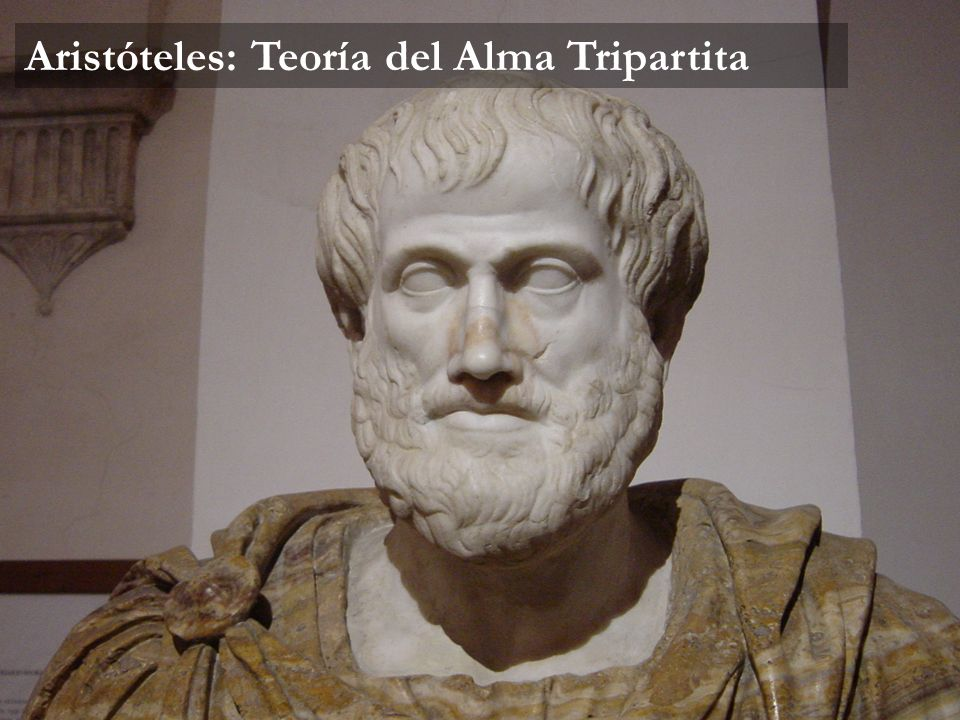 Aristóteles: Teoría del Alma Tripartita