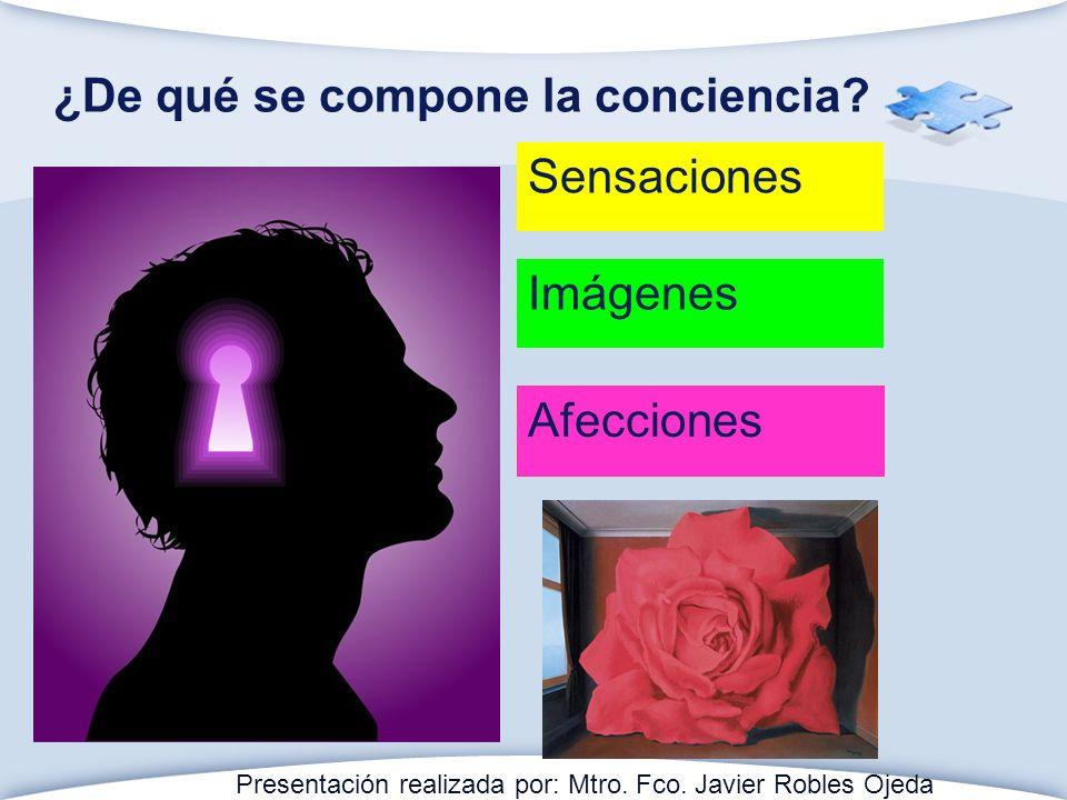 ¿De qué se compone la conciencia