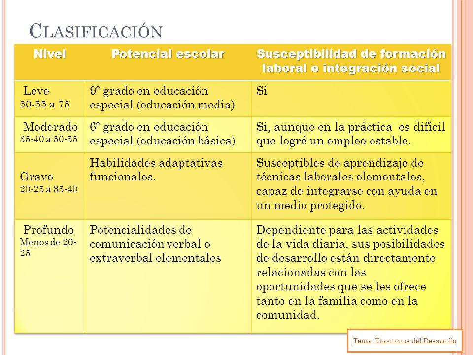 Susceptibilidad de formación laboral e integración social