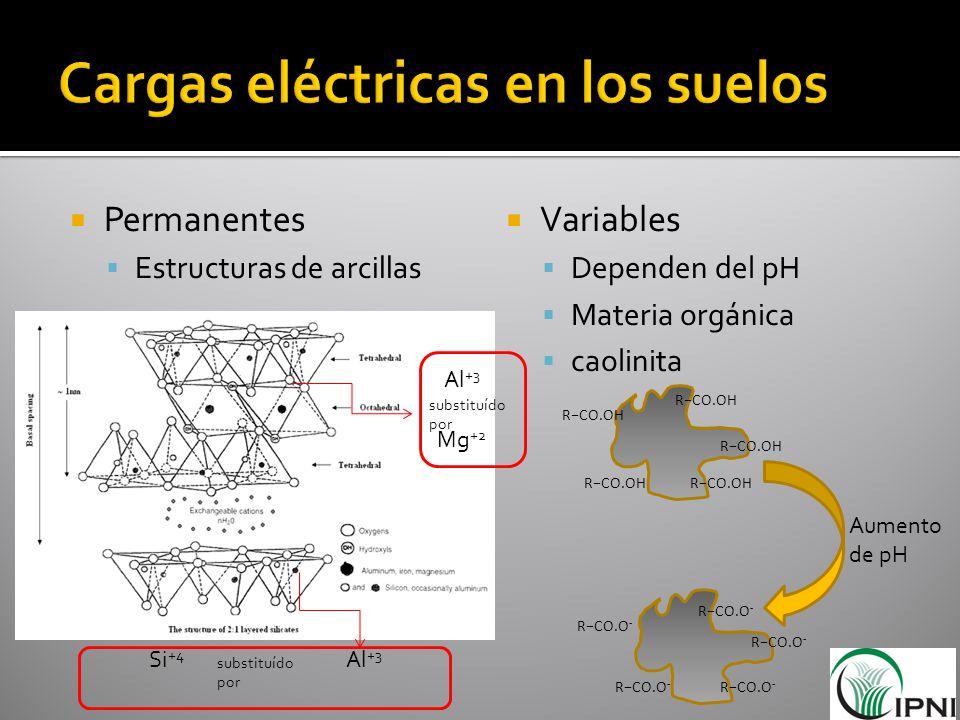 Cargas eléctricas en los suelos