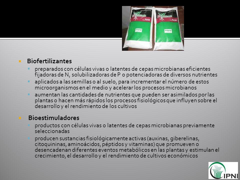 Biofertilizantes Bioestimuladores