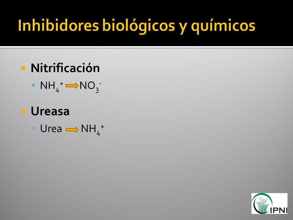 Inhibidores biológicos y químicos