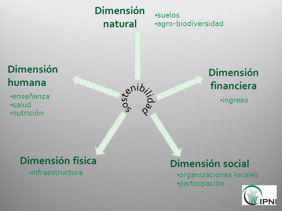 Dimensión natural Dimensión financiera