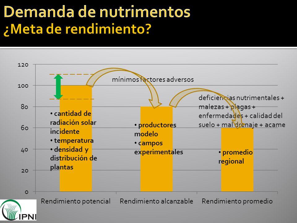 Demanda de nutrimentos ¿Meta de rendimiento