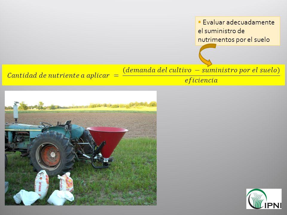 Evaluar adecuadamente el suministro de nutrimentos por el suelo