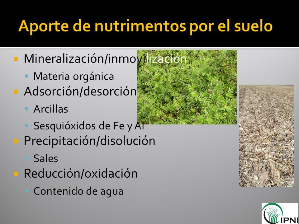 Aporte de nutrimentos por el suelo