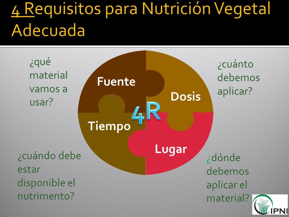 4 Requisitos para Nutrición Vegetal Adecuada