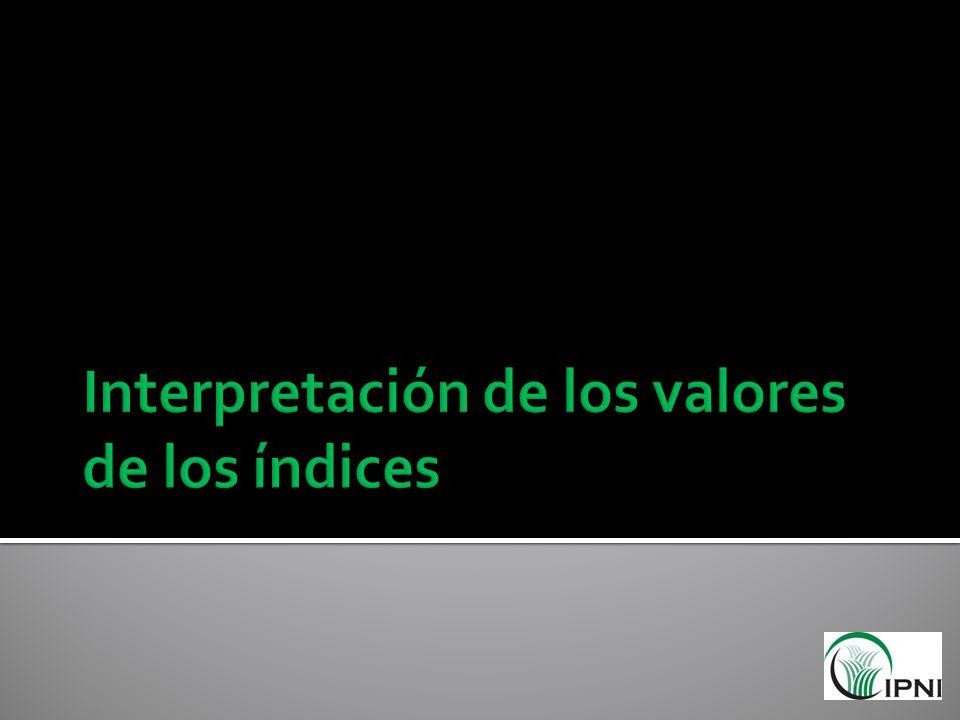 Interpretación de los valores de los índices
