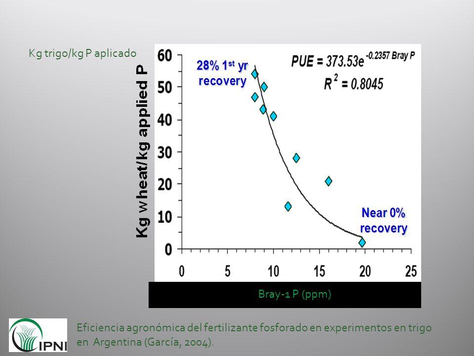 Kg trigo/kg P aplicado Bray-1 P (ppm)