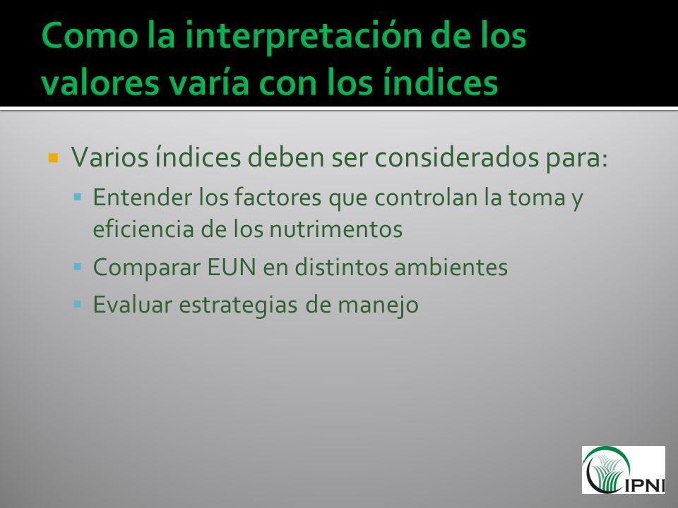 Como la interpretación de los valores varía con los índices