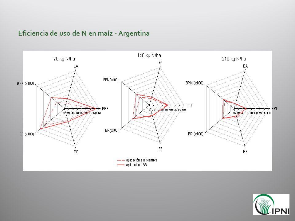 Eficiencia de uso de N en maíz - Argentina