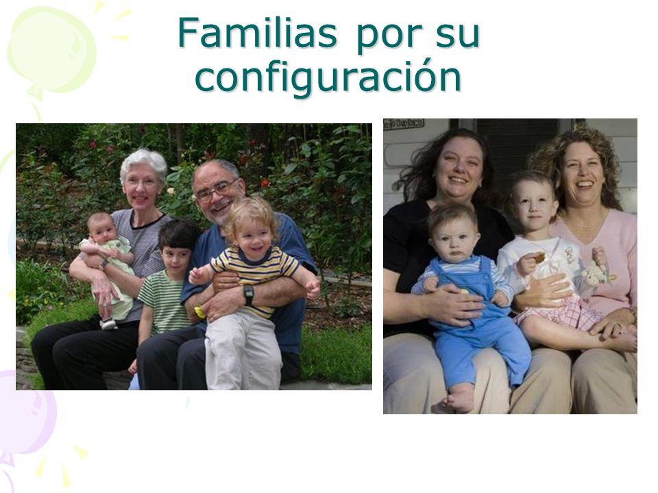 Familias por su configuración