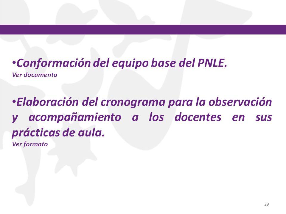 Conformación del equipo base del PNLE.